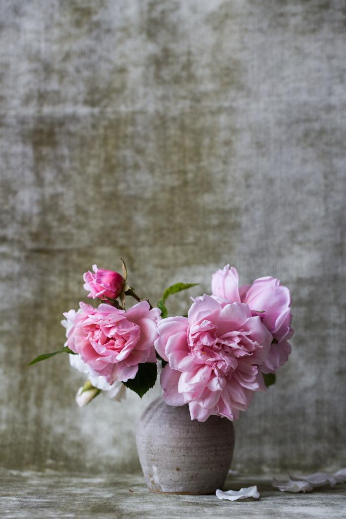 roses-828564_1920