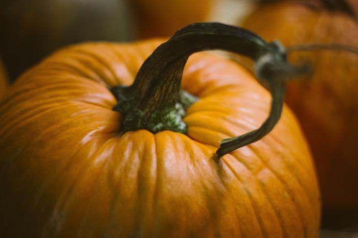 pumpkin-1031112_1920